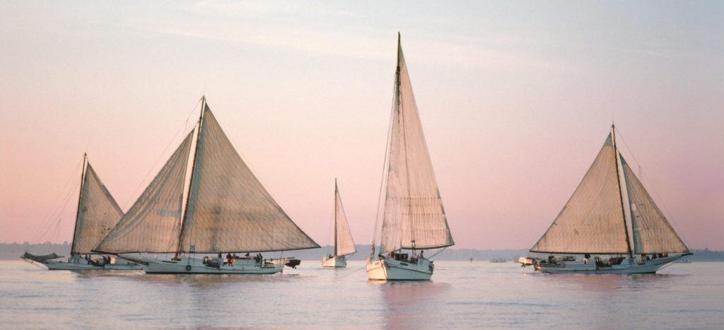 Skipjack Fleet