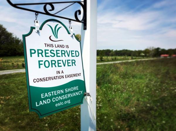 Delmarva Oasis Land Conservation